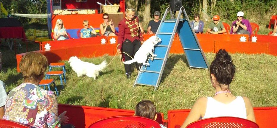 Cirque dans notre camping normandie