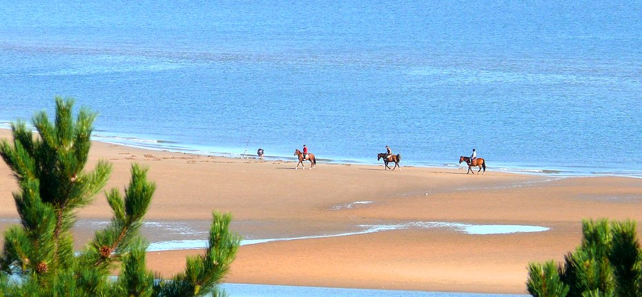 En Normandie prévoyez une balade à cheval en bord de mer